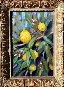 Meyer Lemons Plein air painting by RLOArtist