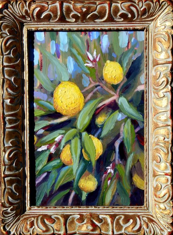 Meyer Lemons Plein air painting by RLOArtist