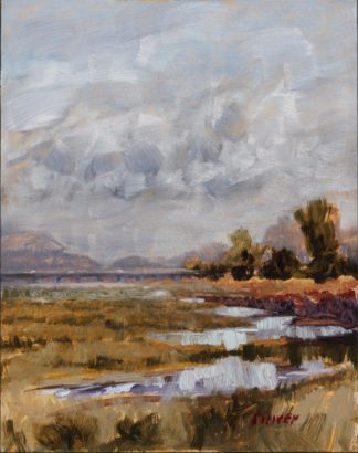 After the Rains ~ Plein air by Ronald Lee Oliver