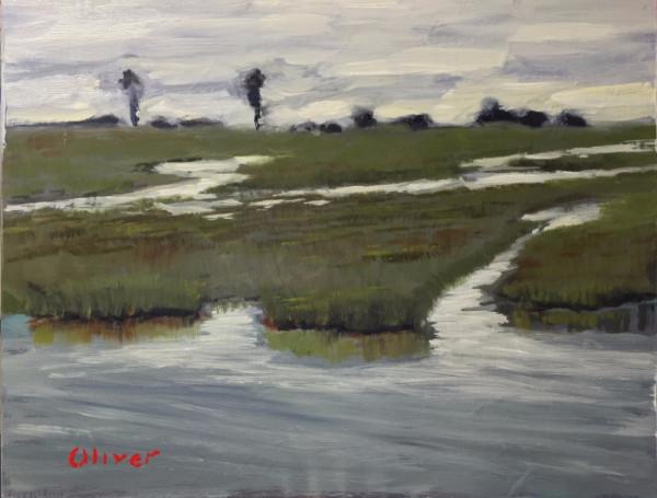 An evening plein air painting at San Elijo Lagoon